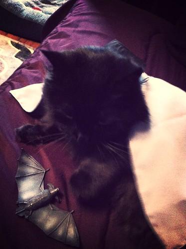 Goth Cat dressup