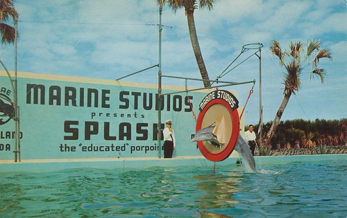Marineland, Florida by The Pie Shops Collection