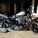 """Fotos de la moto """"Harley-Davidson"""""""
