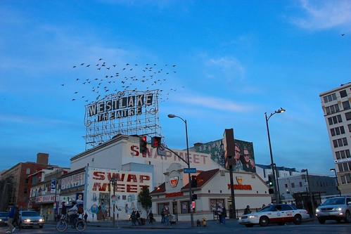 Birds in Westlake Theatre