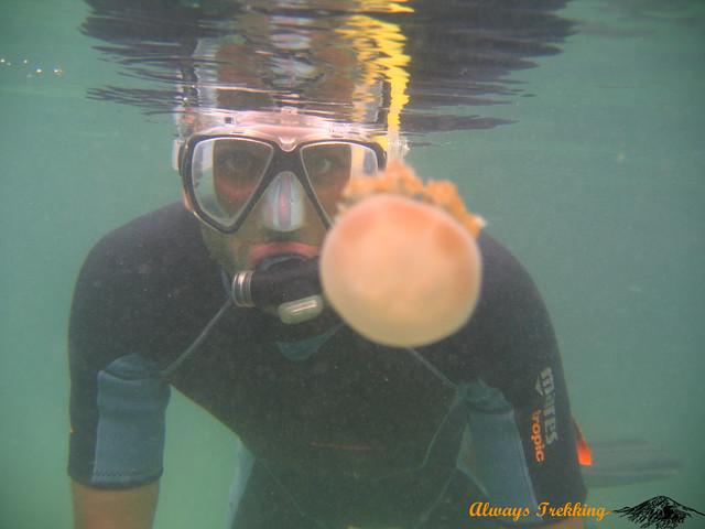 Scuba diving in Derawan, East Kalimantan, Indonesia