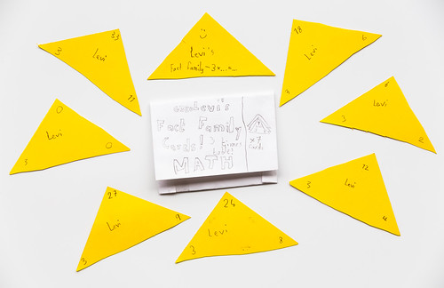 Levi's Fact Family Cards! For multiplication. by stshank