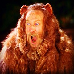 "#bearphotoaday - 01/25 (late) - ""#Growl! RAWR even..."""