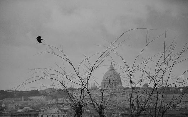 San Pietro's view