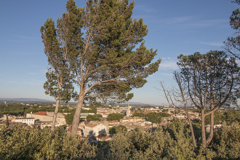 Provence cyling Avignon view