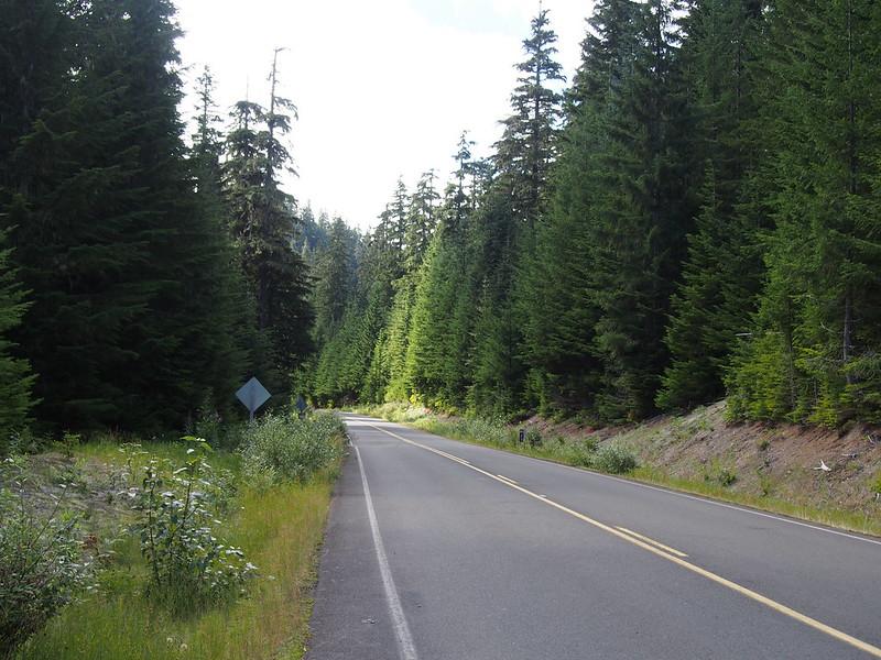 NF Development Road 25
