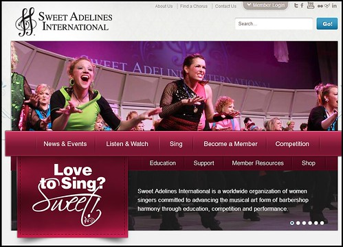 Joel Schlessinger MD supports Sweet Adelines, an all-women singing group