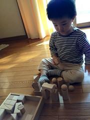 到着とらちゃん (2012/10/13)