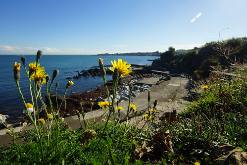 Scenes from Dun Loaghaire on a sunny day in mid-October by CharlesFred