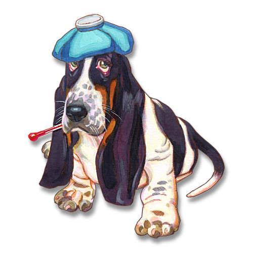 free clipart sick dog - photo #45