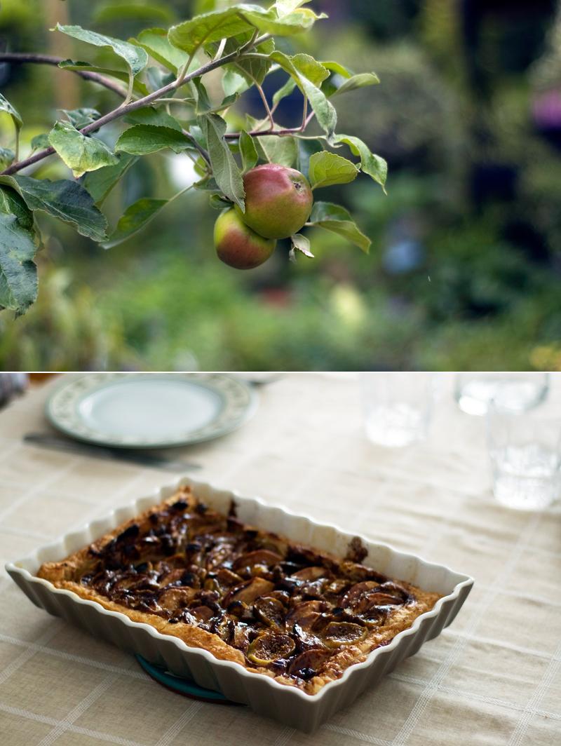 Tarte de Outono (maçãs, figos e phisalis)