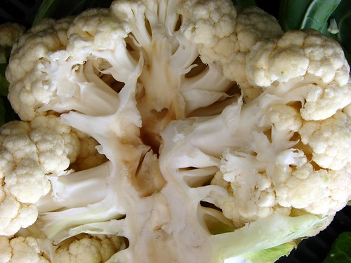 heart of the cauliflower