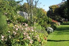 Chippenham Park Gardens 14-10-2012