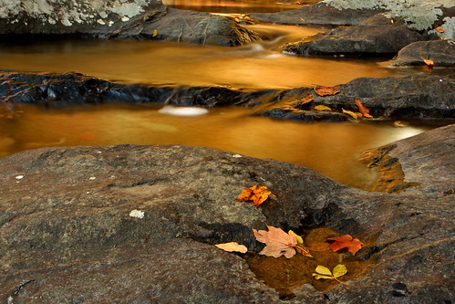 Shenandoah: Gold reflection