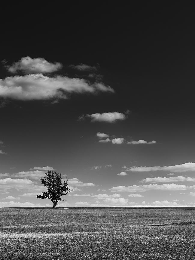 bicycle_landscape_P1020153_bw