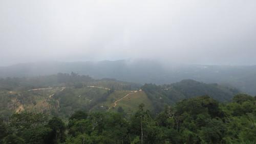 Koh Samui Mountain サムイ島の山にて (24)