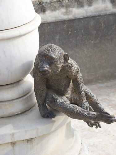 Monkey Figurine in the Giardino di Boboli, Firenze