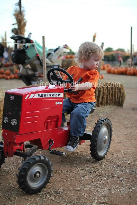 pumpkinpatchtractor