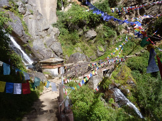 Taktsang-400 steps down