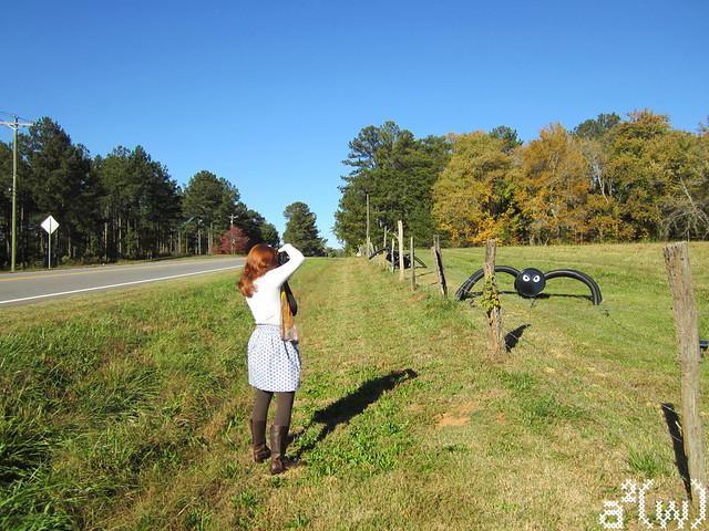 Fall drive 2012-2