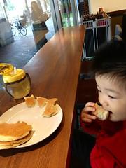 とらちゃんとスタバで朝御飯中です! (2012/10/27)
