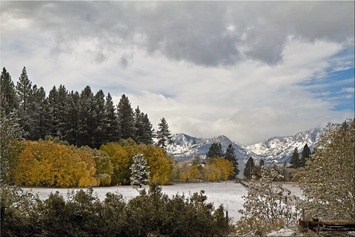 autumn lake snow fall colors yellow gold day snowy cove south snowstorm tahoe first nv zephyr 100views stateline 7997