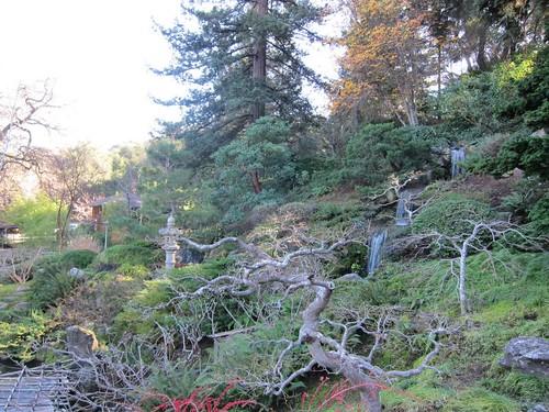 Hakone Japanese Gardens, Saratoga, CA IMG_2422