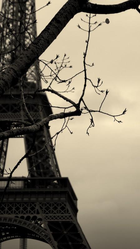 PARIS 140