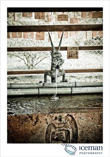 Nara 584