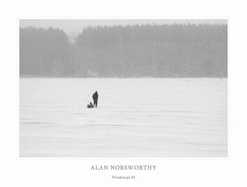 Windswept III by Alan Norsworthy