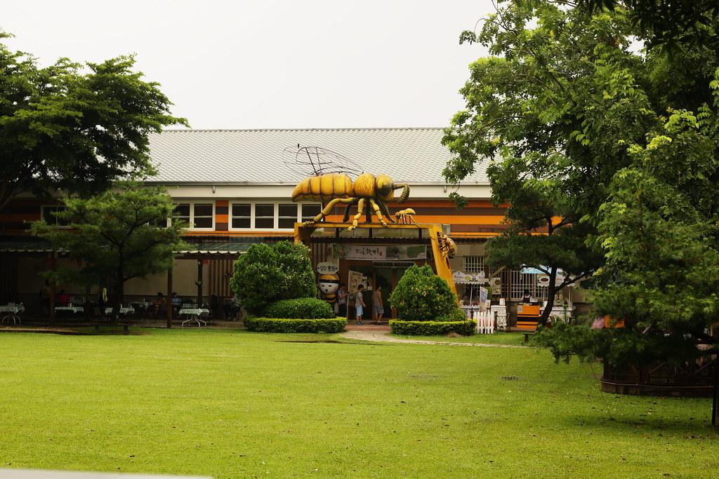 古坑蜜蜂故事館 (5)