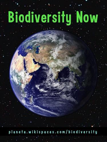 Biodiversity Now