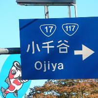 Ojiya2