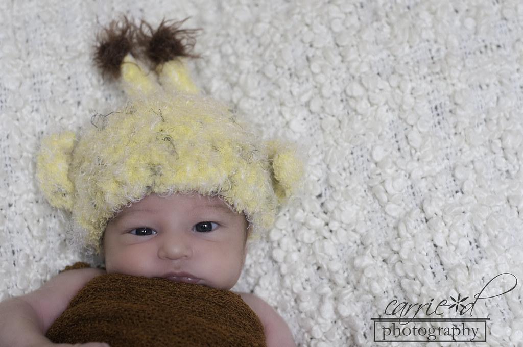 Baltimore Newborn Photographer - Newborn Photography - Robyn 10-4-2012 (83 of 157)