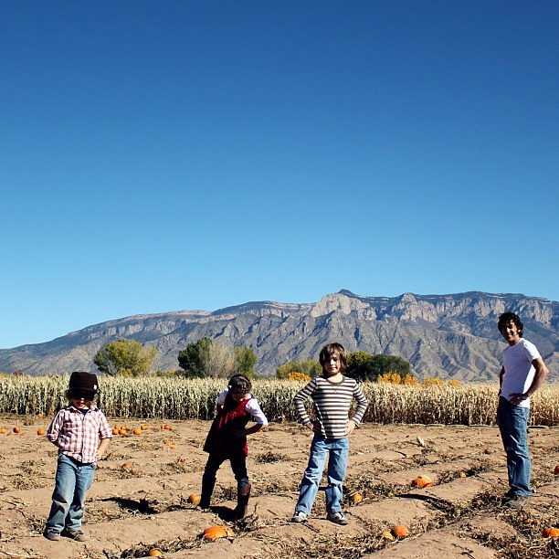 pumpkin patch pose #familybandalbumcover