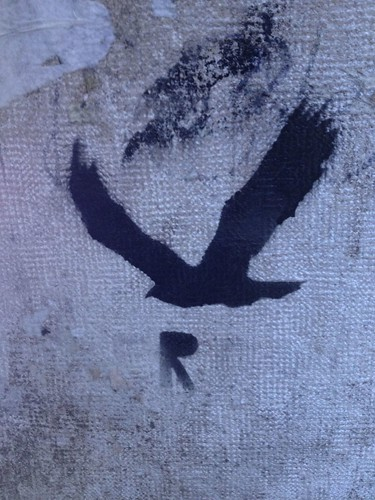 R Bird