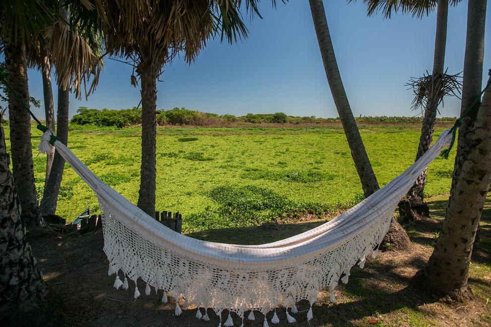 Una hamaca paraguaya permite descansar y escuchar los sonidos de cientos de especies de aves y distintos animales que rodean a la Estación Biológica Tres Gigantes. (Tetsu Espósito)