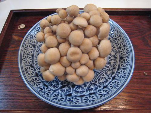 Shimeji (mushroom)