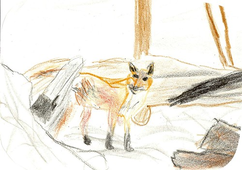 Lucas's Fox in the Snow (Age 9)