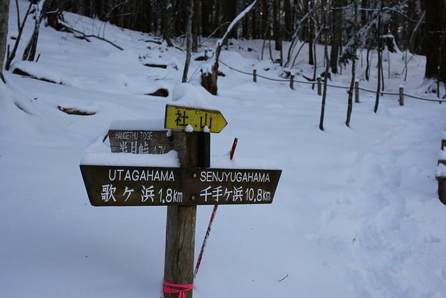 社山_28