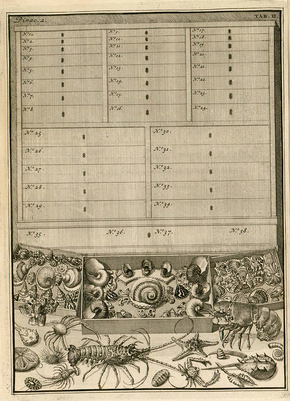 book engraving - collection culture of the 1700s