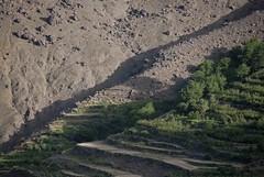 terrazzamenti