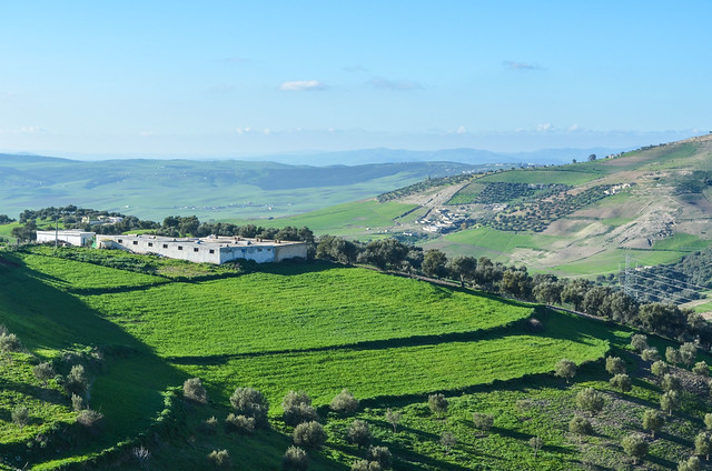 Beautiful rolling hills in Morocco, near Fès