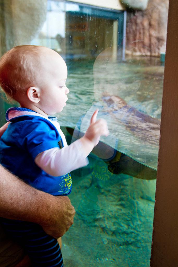 Texas State Aquarium-009.jpg