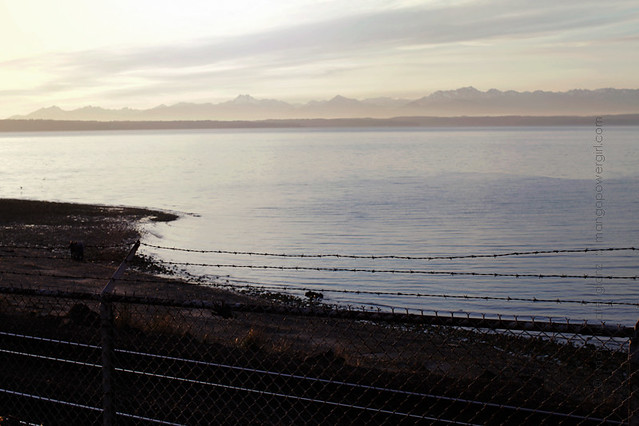 the olympic mountains from carkeek park