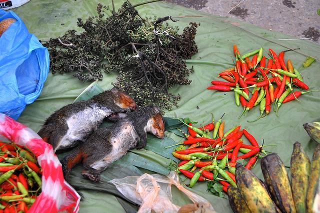 寮國豐沙灣的「生鮮」市場