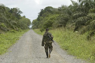 Peace in Colombia: Paramilitaries