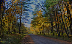 A wonderful drive