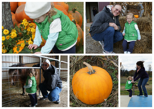 Pumpkin Patch2 2012
