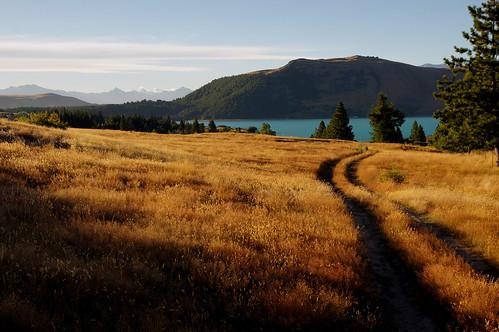 Tekapo landscapes (2)